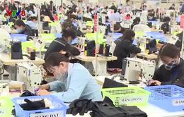Hà Tĩnh: Nhiều doanh nghiệp thiếu lao động