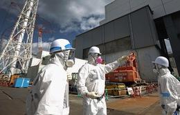 Nhật Bản giảm nhanh sự phụ thuộc vào điện hạt nhân