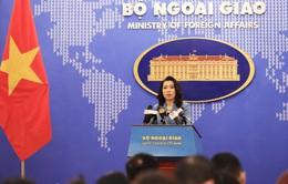 Phản ứng của Việt Nam trước bản Hướng dẫn Chiến lược An ninh Quốc gia tạm thời của Mỹ