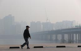 Ô nhiễm bụi mịn nghiêm trọng đe dọa sức khỏe người dân Thủ đô Seoul và miền Trung Hàn Quốc