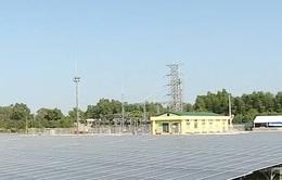 Khánh thành nhá máy điện mặt trời lớn nhất Hậu Giang