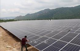 [INFOGRAPHIC] Việt Nam có nhiều cơ sở đển phát triển điện mặt trời
