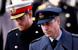 """Nữ hoàng Anh và Thái tử Charles tức giận khi William """"phản pháo"""" Harry"""
