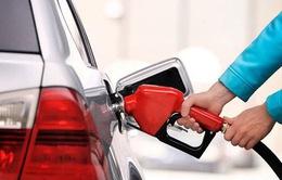 Hàng loạt doanh nghiệp kinh doanh xăng dầu sắp bị tước giấy phép