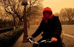 Bão cát tồi tệ nhất trong một thập kỷ tại Bắc Kinh