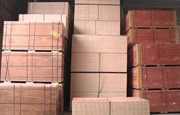 """""""Tấp nập"""" đơn hàng xuất khẩu gỗ đầu năm"""