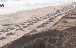 Kè chống sạt lở bờ biển hàng trăm tỷ đồng bị hư hỏng