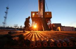 IEA: Nhu cầu dầu mỏ đạt mức cao kỷ lục vào năm 2026