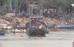 Quảng Ngãi: Nhiều cửa biển bị bồi lấp