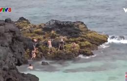 Quảng Ngãi tập trung vực dậy ngành du lịch biển đảo
