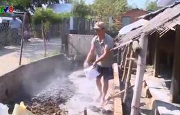 Phú Yên: Nguy cơ lây lan bệnh lở mồm long móng do người dân không khai báo