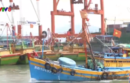 Bình Định: Khắc phục tình trạng nhiều tàu cá mất tín hiệu giám sát hành trình