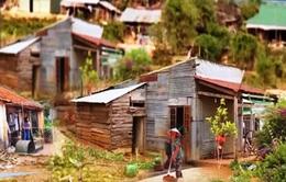 Bình xét hộ nghèo, cận nghèo không thể dựa trên... tình làng, nghĩa xóm