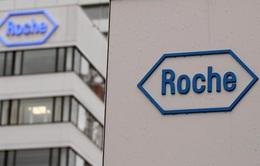 Hãng dược Roche công bố thuốc điều trị bằng kháng thể đầy tiềm năng