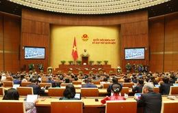 TRỰC TIẾP: Quốc hội nghe báo cáo nhiệm kỳ của Tòa án NDTC, Viện kiểm sát NDTC