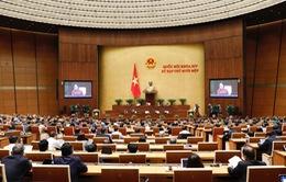 Quốc hội khóa XIV: Một nhiệm kỳ thành công, hoàn thành xuất sắc nhiệm vụ