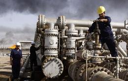 Giá dầu giảm khi hoạt động cứu nạn ở kênh đào Suez đạt tiến triển