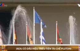 IAEA: Có dấu hiệu Triều Tiên tái chế plutoni