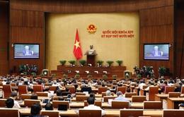 Quốc hội thảo luận các Báo cáo trong lĩnh vực tư pháp