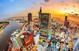 """""""Đại bàng"""" mở rộng tổ tại Việt Nam"""