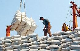Giá gạo xuất khẩu Việt Nam lập đỉnh mới