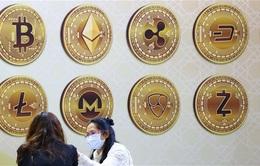 Các ngân hàng Trung ương đẩy mạnh nghiên cứu tiền kỹ thuật số