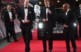 Hoàng tử William và Harry sẽ gặp mặt trực tiếp tại lễ tang ông nội