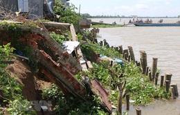 Kè biển Trà Vinh xuất hiện 19 điểm sạt lở nguy cấp