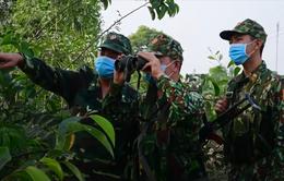 Nếu buông lơi chỉ một lúc, 'cánh đồng trũng' Việt Nam sẽ bị các đợt sóng COVID-19 tràn vào