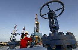 OPEC+ tăng sản lượng dầu từ tháng 5