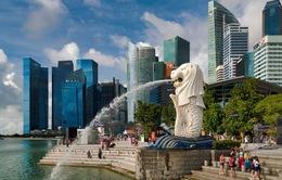 Singapore cấm du khách nhập cảnh từ hầu hết các nước Nam Á