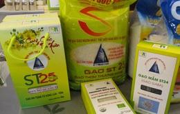 Gạo ST24 và ST25 bị đăng ký thương hiệu bởi doanh nghiệp nước ngoài