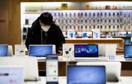 Thị trường máy tính cá nhân tăng trưởng nóng