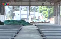 Bình Định: Bến cá hàng chục tỷ đồng bị bỏ hoang