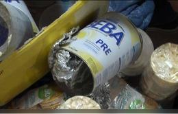 Thu giữ gần 40kg ma túy các loại trong các lô hàng quà biếu