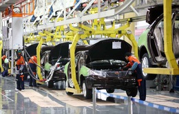 """Thiếu hụt chip đẩy ngành sản xuất ô tô rơi vào cảnh """"ăn không ngồi rồi"""""""