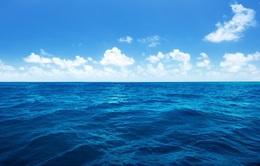 500 robot theo dõi sức khỏe đại dương