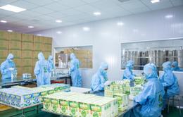 Green Daddy giới thiệu nhà máy sản xuất đạt tiêu chuẩn GMP-WHO