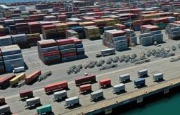 Cảng biển Mỹ tắc nghẽn, phí vận tải biển thế giới nhảy vọt