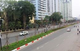"""Hà Nội sẽ """"tạm biệt"""" hàng cây phong lá đỏ trên đường Nguyễn Chí Thanh"""