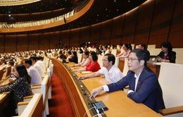 Ngày 7/4, miễn nhiệm một số Phó Thủ tướng Chính phủ và Bộ trưởng