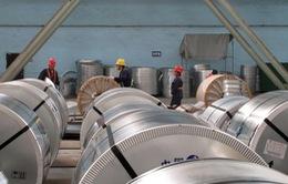 Phòng vệ thương mại: Doanh nghiệp Việt ít chủ động