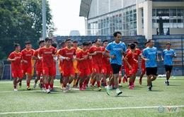 U23 Việt Nam thuộc nhóm hạt giống tại U23 Châu Á 2022