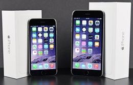 iPhone giá rẻ đã biến mất tại Việt Nam
