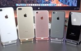 """iPhone """"giá rẻ"""" đã biến mất tại Việt Nam"""