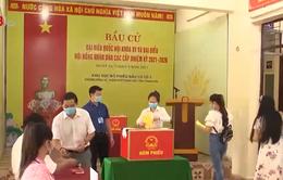 Thanh Hóa: Diễn tập các tình huống bầu cử trong điều kiện dịch bệnh