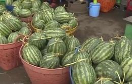TP. HCM: Trái cây giá rẻ tràn ngập chợ đầu mối