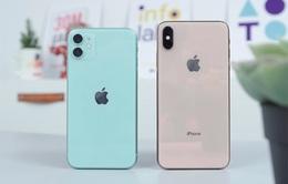Liên tục giảm giá, iPhone 11, XS Max hàng cũ được nhiều người săn đón