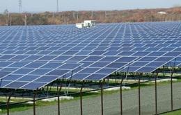 Nhật Bản tăng tỷ lệ năng lượng tái tạo