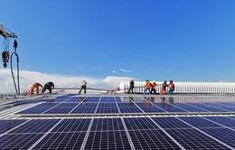 Bộ Công Thương sẽ theo dõi sát Ấn Độ điều tra chống bán phá giá pin năng lượng mặt trời